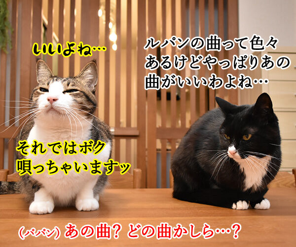 ルパンの曲といえばやっぱりこの曲よねッ 猫の写真で4コマ漫画 2コマ目ッ