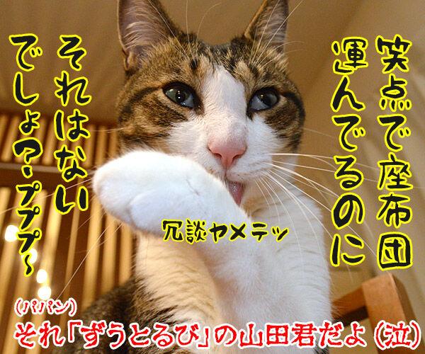 6月29日はビートルズ記念日なんですってッ 猫の写真で4コマ漫画 4コマ目ッ