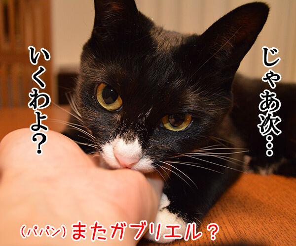 ガブリエル 其の二 猫の写真で4コマ漫画 1コマ目ッ