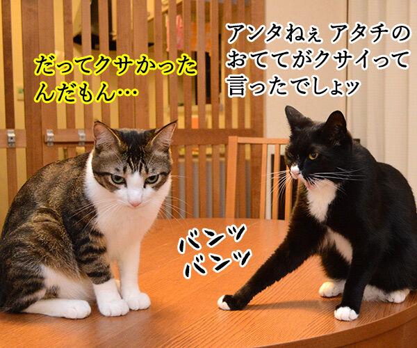疑惑 其の三 猫の写真で4コマ漫画 2コマ目ッ