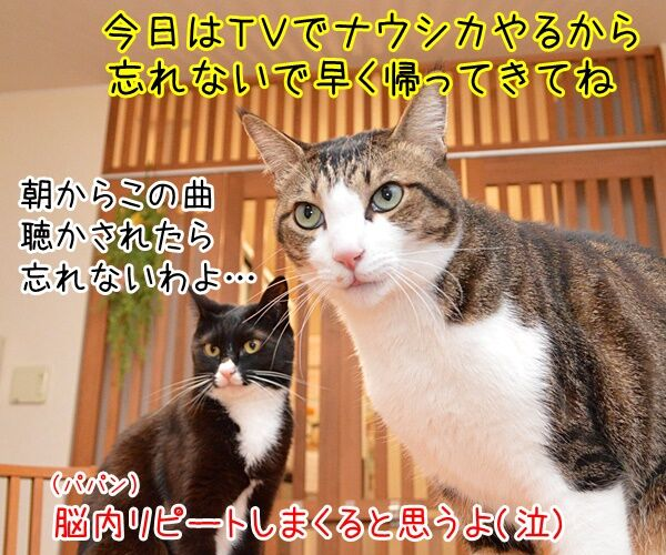 ナウシカ・レクイエム 猫の写真で4コマ漫画 4コマ目ッ