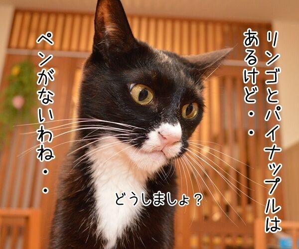 ペンパイナッポーアッポーペン(PPAP)って知ってる? 猫の写真で4コマ漫画 2コマ目ッ
