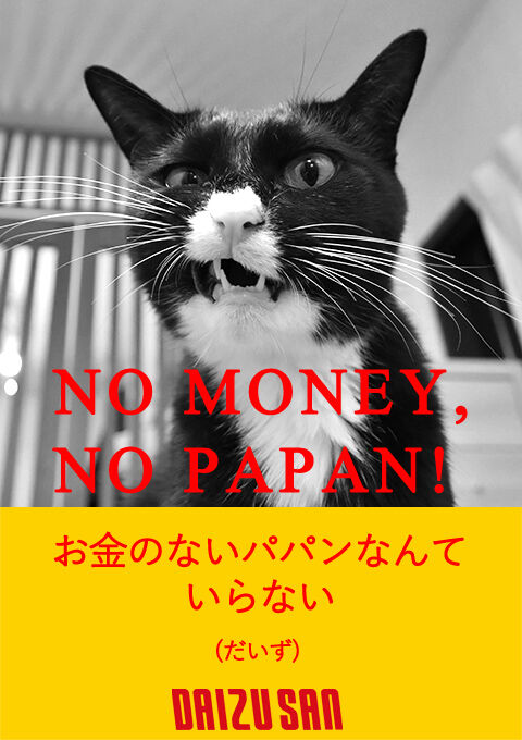 NO MUSIC, NO LIFE 猫の写真で4コマ漫画 4コマ目ッ