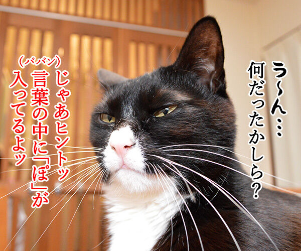 きょうは何の記念日でしょうか? 猫の写真で4コマ漫画 2コマ目ッ
