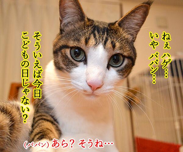 こどもの日 猫の写真で4コマ漫画 1コマ目ッ