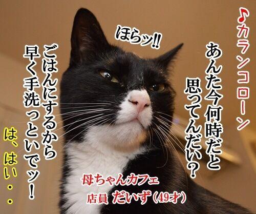 母ちゃんカフェ 猫の写真で4コマ漫画 2コマ目ッ