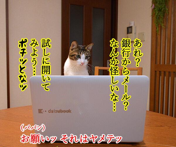 ウィスルによる大規模サイバー攻撃があったんですってッ 猫の写真で4コマ漫画 3コマ目ッ