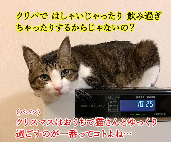 イブの夜10時は心筋梗塞の発作ピークなんですってッ 猫の写真で4コマ漫画 2コマ目ッ