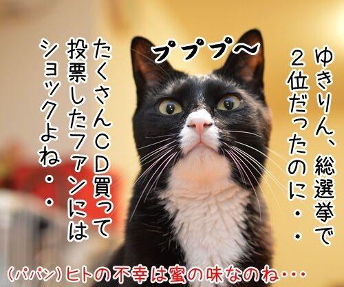 AKB柏○とNEWS手○の熱愛報道 猫の写真で4コマ漫画 2コマ目ッ