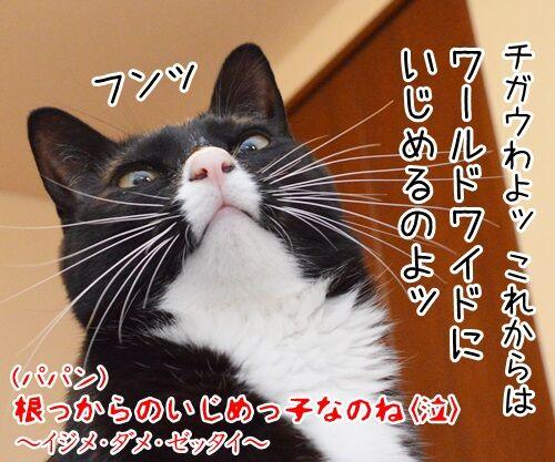 イジメ・ダメ・ゼッタイ 猫の写真で4コマ漫画 4コマ目ッ