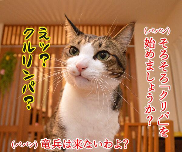 そろそろクリパをはじめましょうか 猫の写真で4コマ漫画 1コマ目ッ