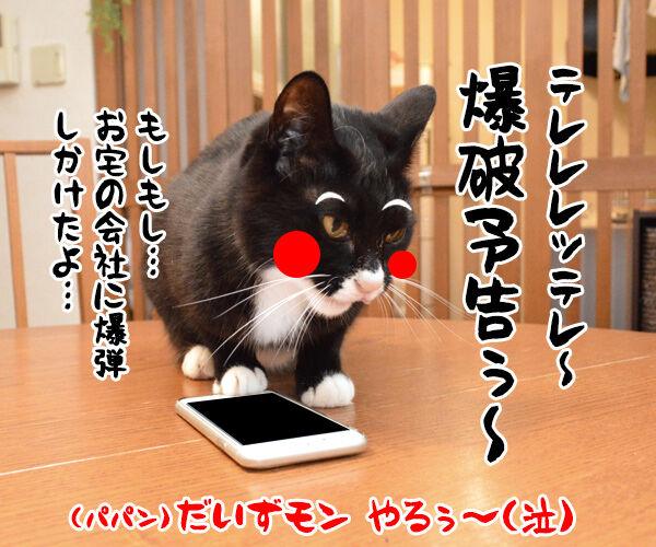 助けて!!だいずモン 其の二 猫の写真で4コマ漫画 4コマ目ッ