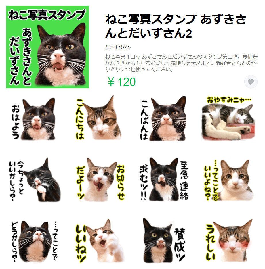 LINEスタンプの第二弾が販売されたのよッ 猫の写真で4コマ漫画 6コマ目ッ