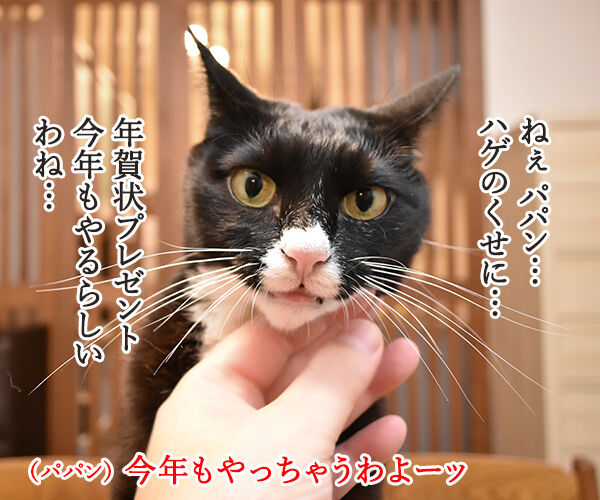 今年もあずだい年賀状を送っちゃうわよーッ 猫の写真で4コマ漫画 1コマ目ッ