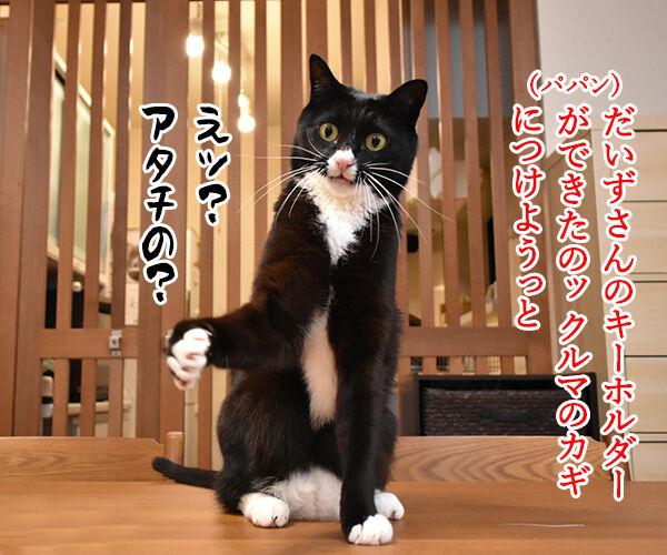 だいずさんのキーホルダーができたのよッ 猫の写真で4コマ漫画 1コマ目ッ
