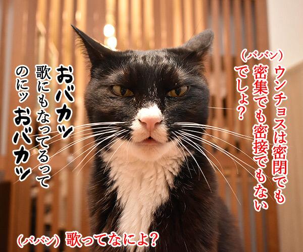 ウンチョスは自粛しなくちゃなのッ 猫の写真で4コマ漫画 3コマ目ッ