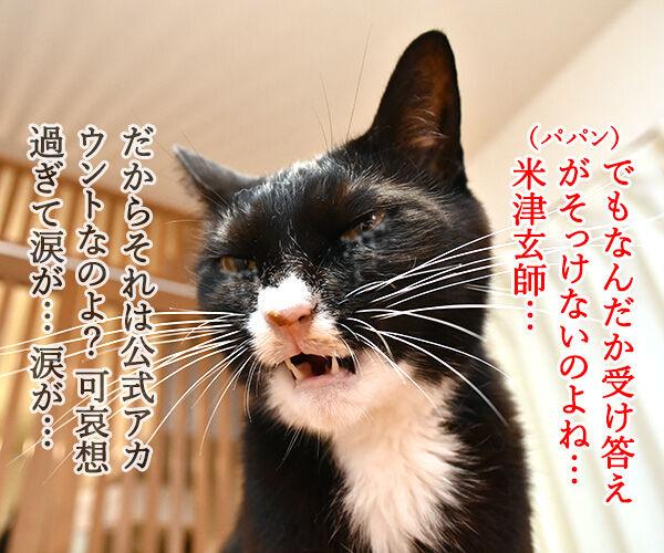 あずだいのLINEスタンプ 第二弾 猫の写真で4コマ漫画 4コマ目ッ