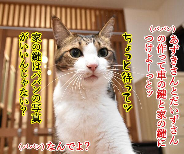 かわいいキーホルダーが欲しいのよッ 猫の写真で4コマ漫画 3コマ目ッ