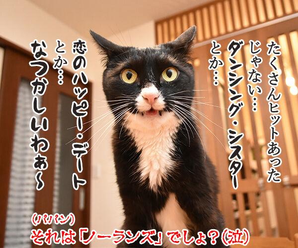 ヤクルトの小川選手がノーヒットノーランなんですってッ 猫の写真で4コマ漫画 4コマ目ッ