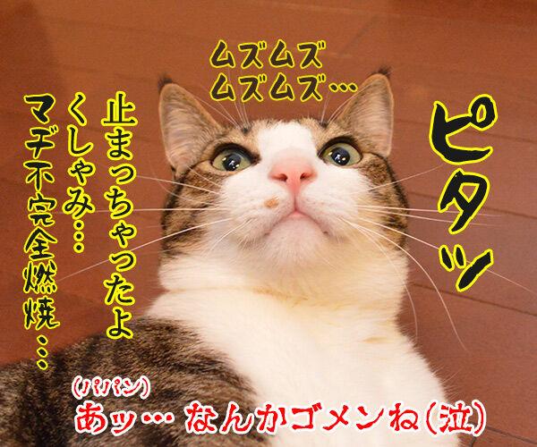 くしゃみが出そう 猫の写真で4コマ漫画 4コマ目ッ