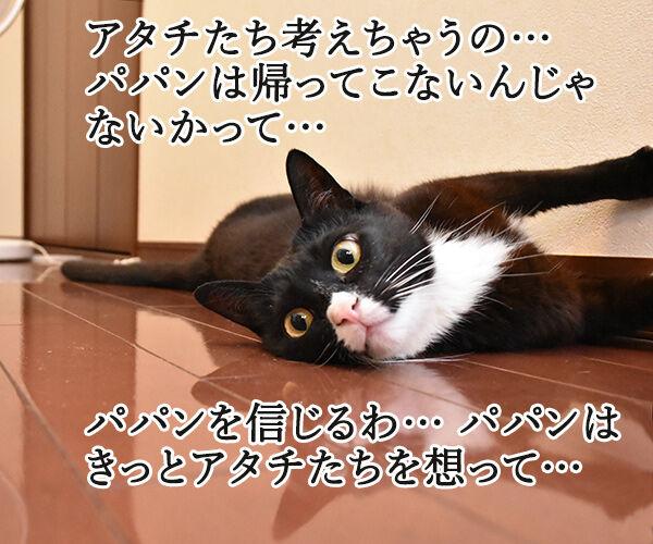 泣けちゃう漫画『おじさまと猫』って知ってる? 猫の写真で4コマ漫画 2コマ目ッ