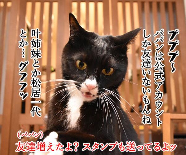 あずだいのLINEスタンプ 第二弾 猫の写真で4コマ漫画 3コマ目ッ
