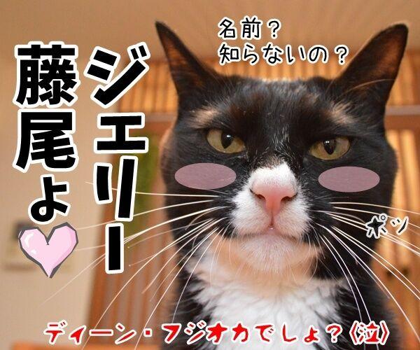 福山雅治宅に不審な女性が侵入ですってッ 猫の写真で4コマ漫画 4コマ目ッ