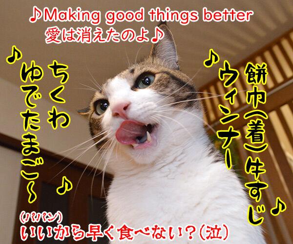 おでんのBGMといえばこの曲よねッ 猫の写真で4コマ漫画 4コマ目ッ