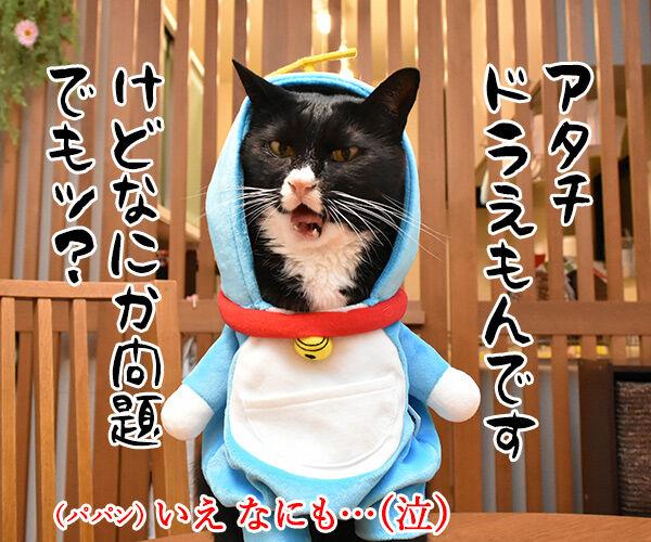 だいずさんがドラえもんなら 猫の写真で4コマ漫画 1コマ目ッ