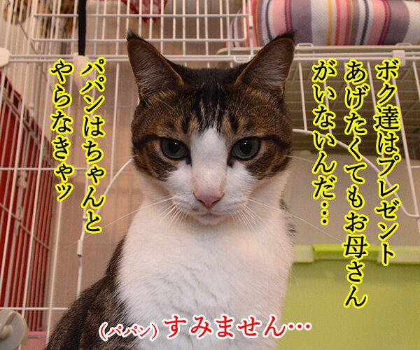 母の日のプレゼント 猫の写真で4コマ漫画 2コマ目ッ
