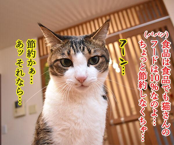 ペットフードの消費税は何%? 猫の写真で4コマ漫画 3コマ目ッ