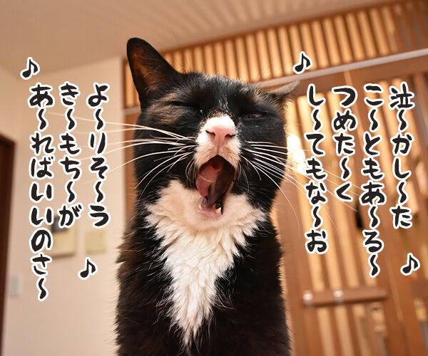 あの曲名が思い出せないのよッ 猫の写真で4コマ漫画 1コマ目ッ