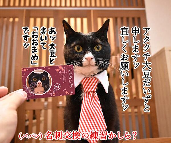 「ニャにもん」で名刺をつくったのよッ 猫の写真で4コマ漫画 1コマ目ッ