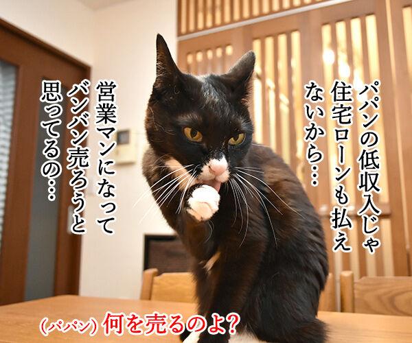 『ニャにもん』で猫の名刺データが作れるのよッ 猫の写真で4コマ漫画 3コマ目ッ