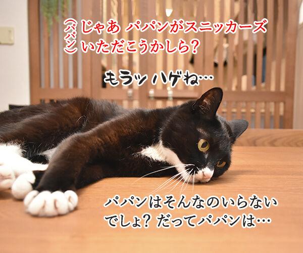 おなかがすいたらスニッカーズよねッ 猫の写真で4コマ漫画 3コマ目ッ