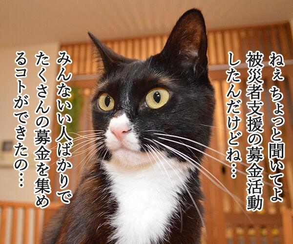 熊本地震 気を付けなくちゃいけないコト 猫の写真で4コマ漫画 3コマ目ッ