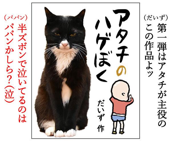 『わたしのげぼく』のスピンオフ作品を考えてみたのッ 猫の写真で4コマ漫画 3コマ目ッ