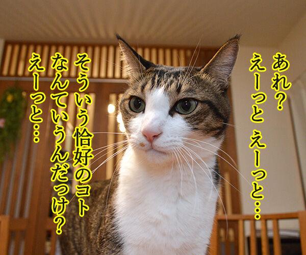 そろそろクリパをはじめましょうか 猫の写真で4コマ漫画 3コマ目ッ