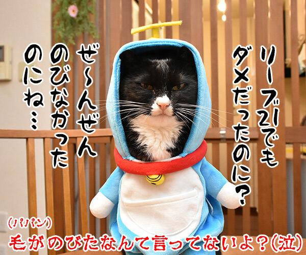 だいずさんがドラえもんなら 猫の写真で4コマ漫画 4コマ目ッ