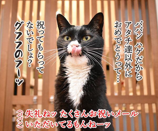 昨日はパパンのお誕生日だったのよッ 猫の写真で4コマ漫画 3コマ目ッ