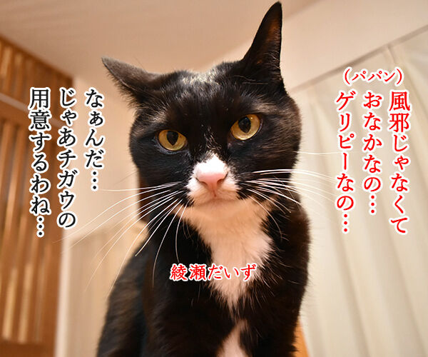 あなたの風邪はどこから? 猫の写真で4コマ漫画 3コマ目ッ