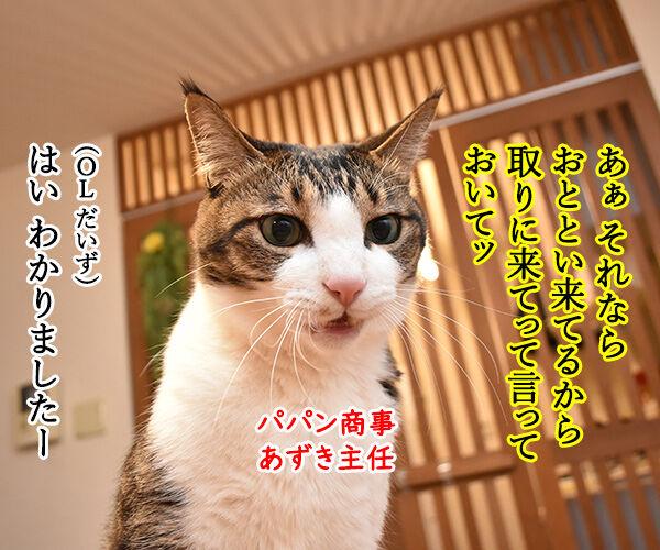 OLだいずの電話応対 其の二 猫の写真で4コマ漫画 3コマ目ッ