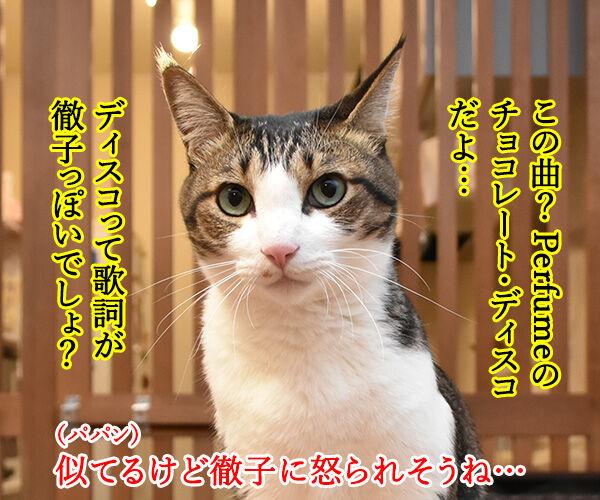 黒柳徹子の歌 猫の写真で4コマ漫画 3コマ目ッ