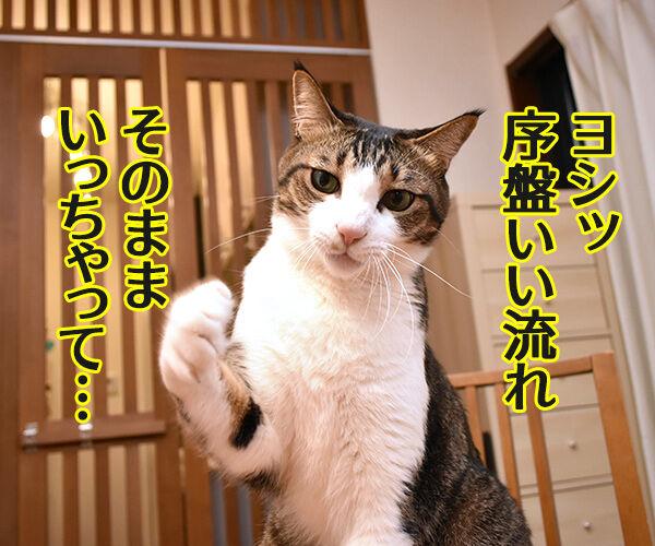 羽生くーんッ ガンバッテーッ 猫の写真で4コマ漫画 2コマ目ッ