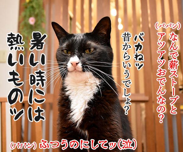 毎日暑いから 暑中お見舞い申し上げます 猫の写真で4コマ漫画 4コマ目ッ