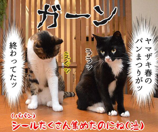 ああ…! もうッ だめだ…! 猫の写真で4コマ漫画 4コマ目ッ