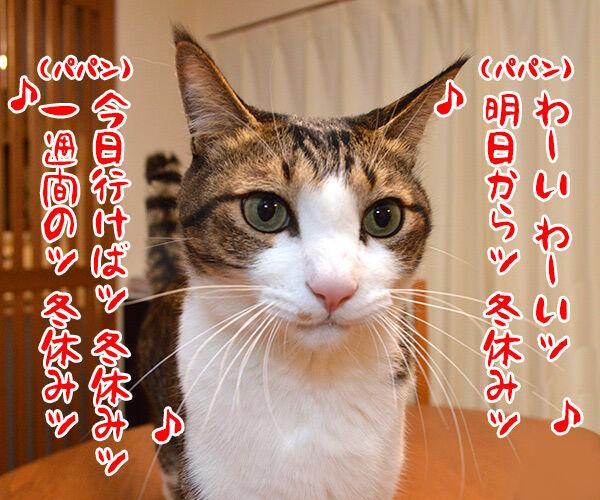 帰省ラッシュ始まるッ 猫の写真で4コマ漫画 3コマ目ッ