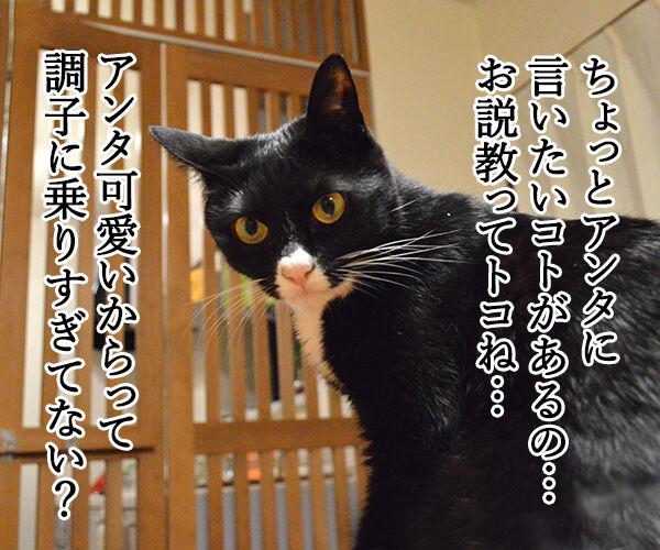 お説教 猫の写真で4コマ漫画 1コマ目ッ