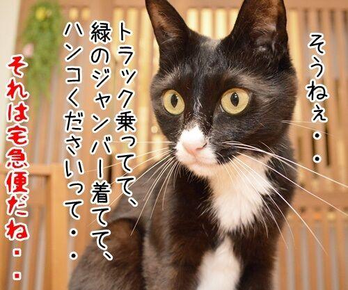 この後… どうする…? 猫の写真で4コマ漫画 4コマ目ッ