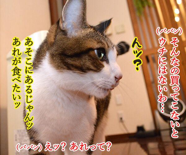 「ロイヤルカナンのカリカリ グリニーズ添え」でございます 猫の写真で4コマ漫画 3コマ目ッ